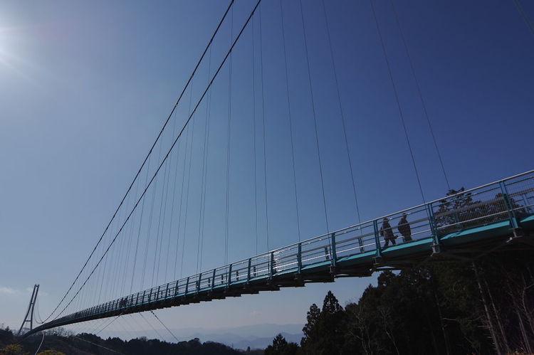 日本一長い歩行者専用吊り橋「三島スカイウォーク」 吊り橋 Bridge - Man Made Structure Architecture Transportation Suspension Bridge Built Structure