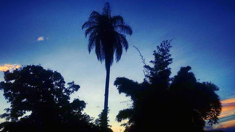 Si Dios creó sombras es para destacar mejor la luz. Juan XXIII Sunset in Santarosa de Copan Honduras hn SRC BienQueSi shadows ElBambu Dusk sunset_pics sunsetlovers sunsetporn twilight nature landscape naturelovers beautiful sky skyporn skylovers instasky cloudsporn instalike instamoment instagood