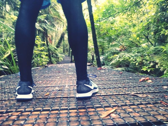 Nike✔ Running Kauri Trees Track New Zealand