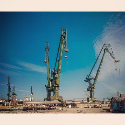 Moje miasto Gdańsk - stoczniowe żurawie :) My city Gdańsk - shipyard's cranes Fotomagik Fotoremik Gdansk Igersgdansk Ilovegdn Ilovetrojmiasto My3miasto Mycity Tricity Trojmiasto 3city 3miasto Zkmgdansk Gdansk_official Cranes Crane Shipyard