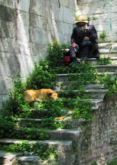 Dog Domestic Animals Friendship Hat Homeless Man And His Dog Leisure Activity Mammal Man With Hat Outdoors Plant Relaxation Wizard Fine Art Photography Live For The Story