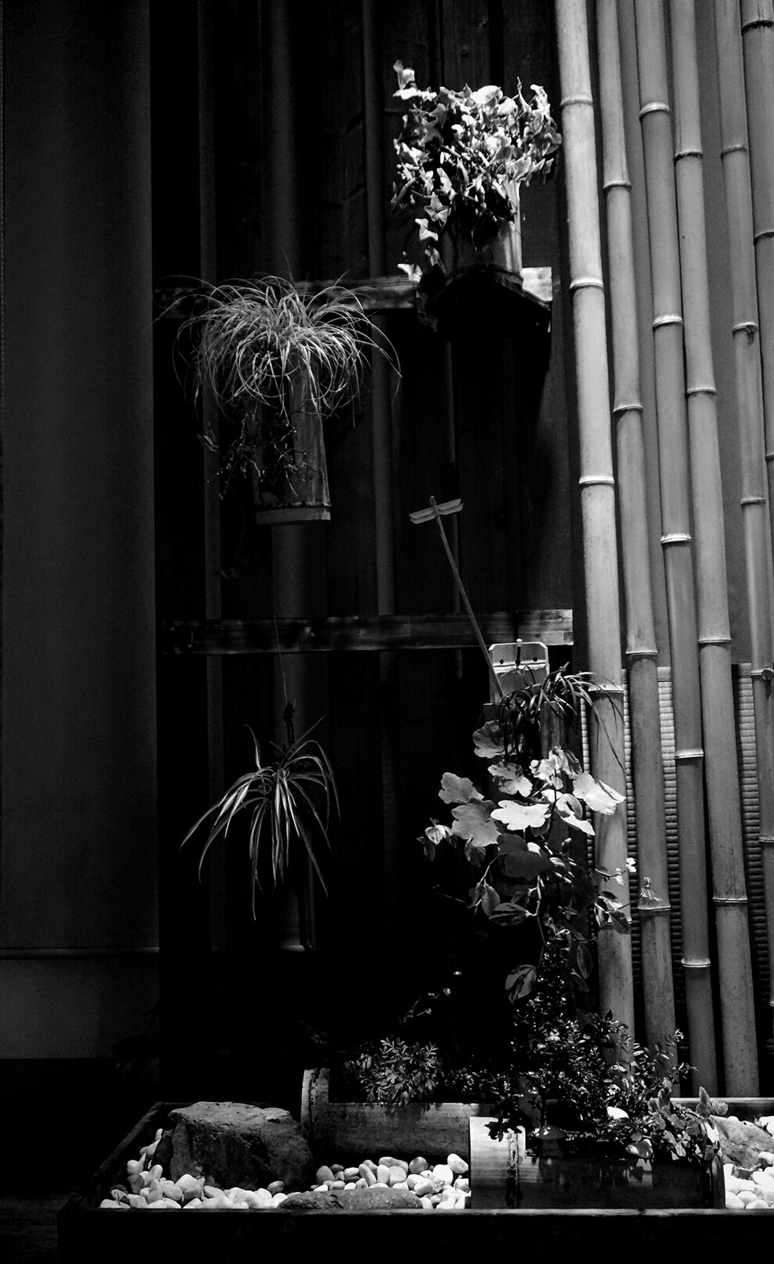 building exterior, architecture, built structure, potted plant, window, plant, statue, day, human representation, outdoors, house, retail, city, outside, building, flower, art and craft, hanging, store, art