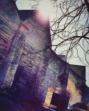 Weilheim Germany Weilheim In Oberbayern Weilheim GERMANY🇩🇪DEUTSCHERLAND@ Fresh On Eyeem  Travel Photography Travelgram Street Photo Wall Brick Wall Mycapture Street Photography The Street Photographer - 2016 EyeEm Awards Street Branches Of Trees Branches No Leaves Streetphotography Branches Bricks Sunlight Effect Sunlight