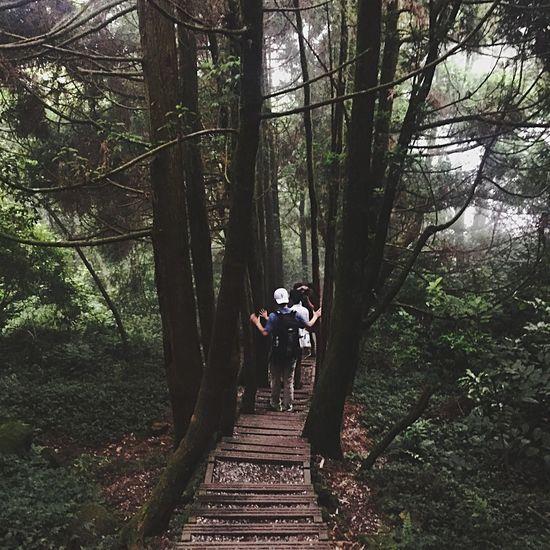 Taiwan Hiking Trail