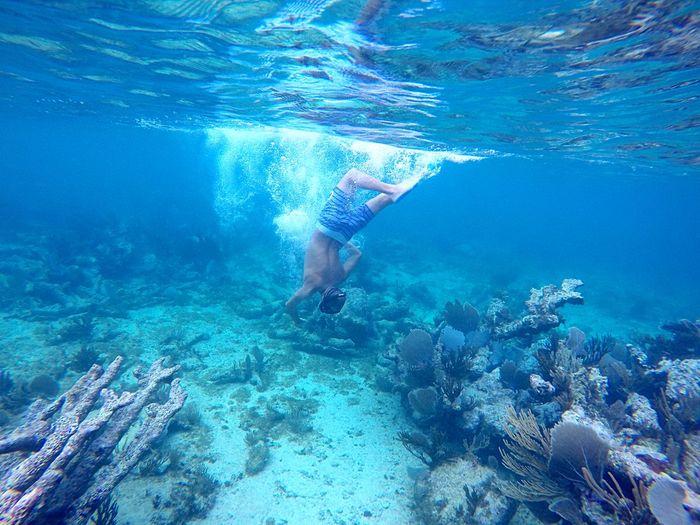 Shirtless mid adult man swimming undersea