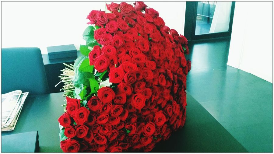 365 red roses - Lucky girl :-) Red Roses