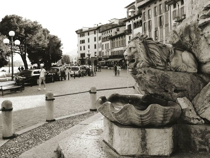 Lovere, Italy Outdoors Day Art Is Everywhere Art And Craft Monochrome Blackandwhite Lion Statue Fountain Beautiful Vintage Lovere Italy Marble Backgrounds Town Stillness EyeEm Gallery EyeEm Best Shots Tranquility Tranquil Scene The Street Photographer - 2017 EyeEm Awards The Architect - 2017 EyeEm Awards