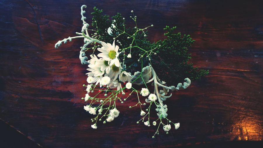 Wood - Material Table Flower Directly Above Indoors  No People Herb Freshness Fragility Nature Hanging Close-up