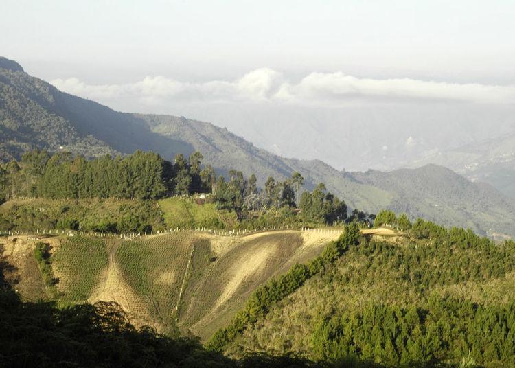 Las montañas de mi tierra Cloud - Sky Day Landscape Mountain Nature Rural Scene Sky Tranquility