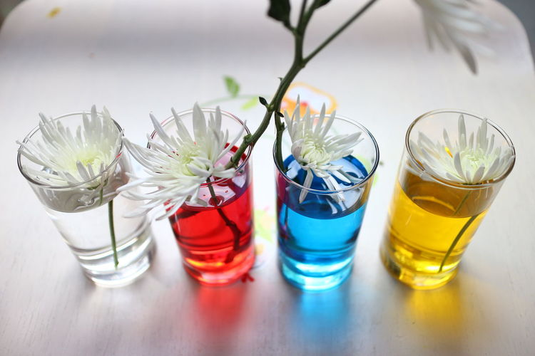 Close-Up Of Flowers In Shot Glasses