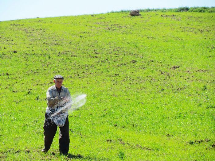 Senior man sprinkling fertilizers on farm