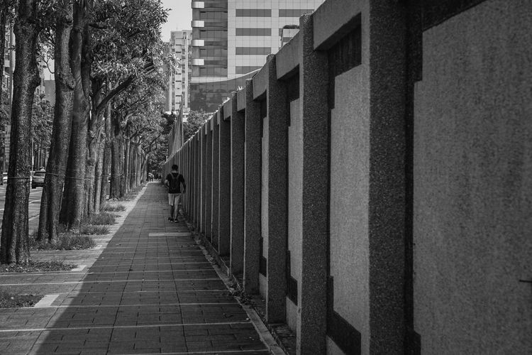 alone Somewhere I Remember Way To Go Home Dreaming Light And Shadow Black And White Blackandwhite Photography Black & White People Way People Watching Walking Walk this Way Sidewalk Trees Man Blue One Person See What I See Design Element Design Beautiful Back Shot  Alley Lane