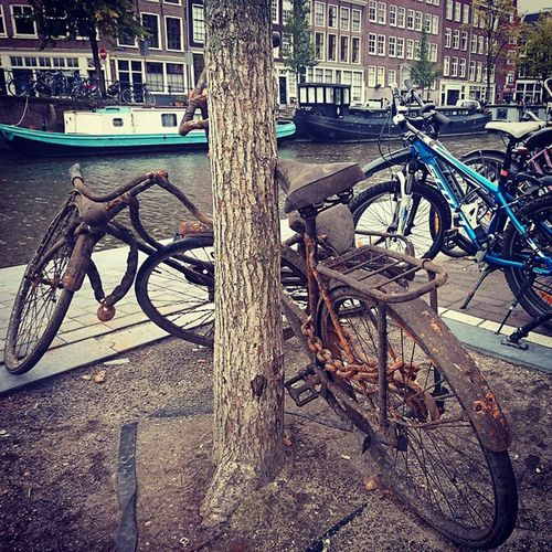 Rusty times Amsrerdam Bicycle Walkingaround Walkingaroundthecity Traveller