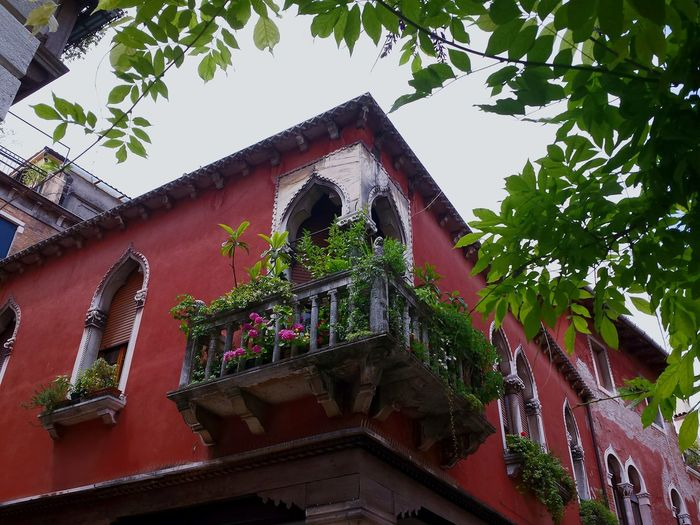 Venice, Italy Venedig Balcony Shot Balcony Balcony Flowers Corner Balcony Red House Ladyphotographerofthemonth Naturally Framed Leaves And Branches Windows Balcony Plants Balcony And Window Architectural Design Architectural Detail Mediterranean  Colourful Bogenfenster From A Low Angle Holiday Memories Sightseeing in Venice Städtetour nach Venezia Colour Of Life The Architect - 2017 EyeEm Awards