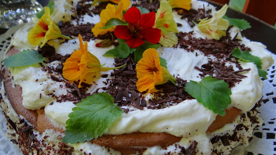 Sponge cake with whipped cream, chocolate, decorated with flowers of nasturtium and mint leaves. Бисквитный торт со взбитыми сливками, шоколадом, украшенный цветами настурции и листочками мяты. Biscuits Cake Cakes Cake♥ Chocolate Chocolate Cake Chocolates Chocolate♡ Close-up Cream Food Food Photography Food Porn Foodphotography Foodporn Freshness Macro Macro Beauty Macro Nature Macro Photography Macro_collection Macro_flower Macrophotography Nasturtium Sponge Cake
