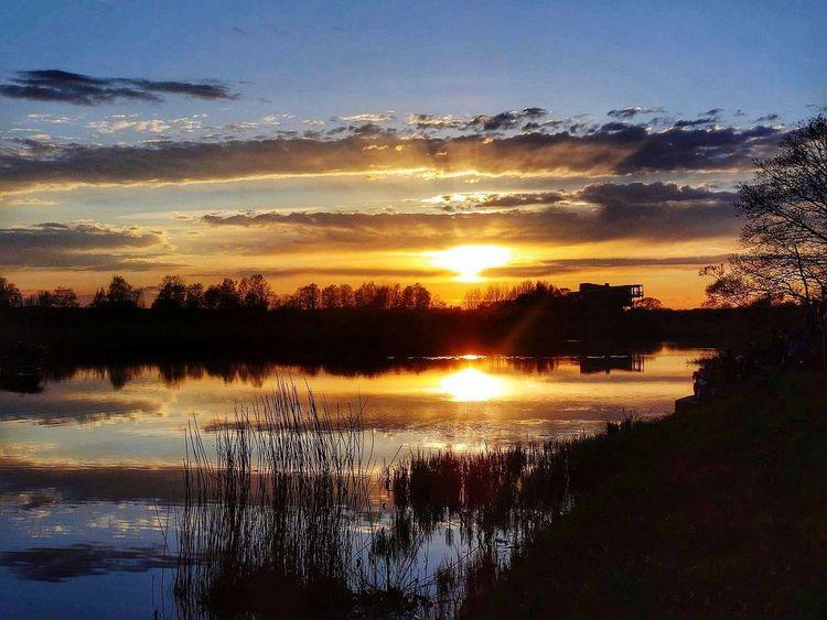 sunset Tree Silhouette Reflection Sunlight Landscape