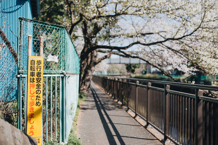 Low angle view of text on railing against trees