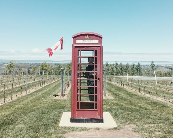 Composition Vineyard Phone Booth Red Horizon Over Water Nature Outdoors Clear Sky