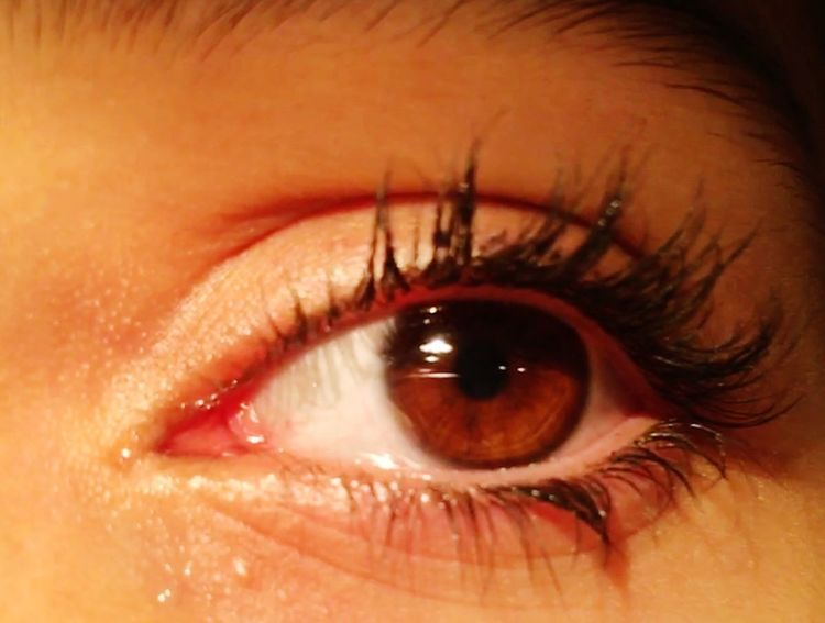 Eyelashes Crying Eye Brown Eyes Eye Iris - Eye Day Indoors  Vision Portrait People Human Skin Sensory Perception Eyeball Close-up Eyebrow