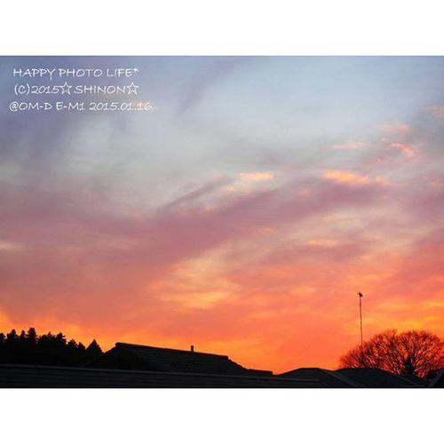 2015.07.07. * 今日は息子が考え、考えしながら 出てきた言葉に驚かされ 成長を感じた1日になりました(*´ω`*) 7月7日の奇跡かな?(笑) * 残念ながらの夜空だけど 雲の上では 織姫と彦星が出逢えているといいね♪ * 明日も楽しく過ごせますように(*^^*) * おやすみなさい 過去写真 過去空 優しい空 sky PhotoGrid Olympus olympus倶楽部 om_d e_m1 my_pic