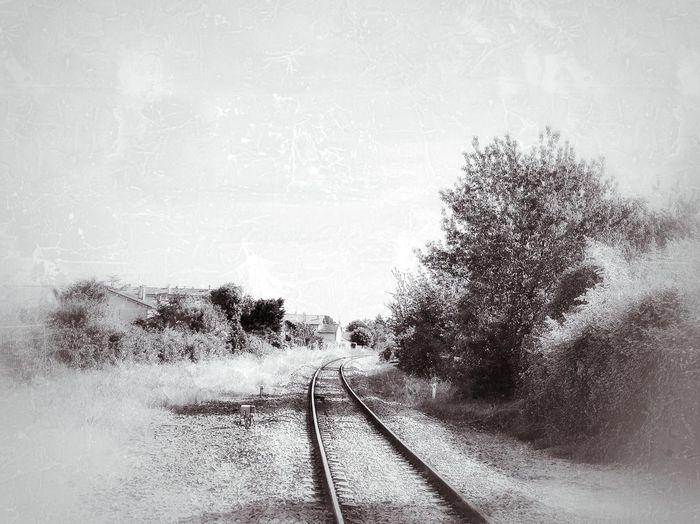Train Sepia
