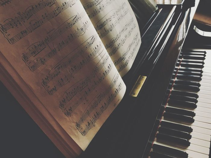 IPhone X Music