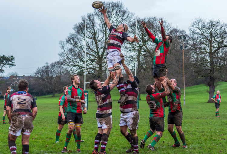 Lineout Rugby