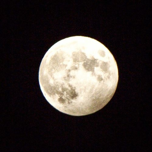 Because moon! Moon Supermoon Luna Afterdark landoflivingskies skycaptures sask prairielife yqr reginask regina