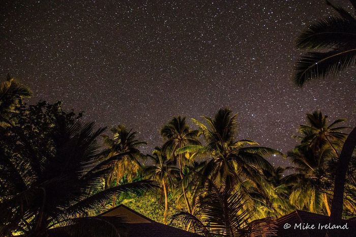 Stars above the Maldives Island Diamonds Athuruga Palm Tree Tree Night Tropical Climate Star - Space Sky No People Tranquility Nature Tree Trunk Space Outdoors Growth Scenics Beauty In Nature Galaxy Astronomy (null)EyeEmNewHere Eyeemphotography
