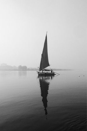 Reflection Water Clear Sky Nautical Vessel Nature Sky Waterfront Lake Sailboat EyeEmNewInHere No People Outdoors Day Sailing Beauty In Nature Fog Boat Egypt Maadi Black And White B&w Iphonephotography EyeEmNewHere