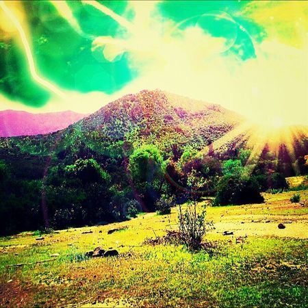 mi mundo ok Mundo Edicion Nature
