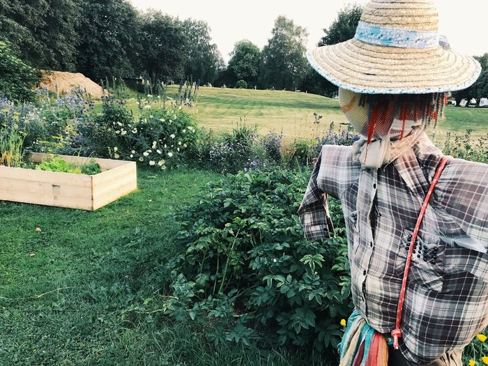 scarecrow at a open agricultural garden Agriculture Sun Hat Women Outdoors One Woman Only Adult One Person Growth Lifestyles Only Women Adults Only Young Adult Tree Day One Young Woman Only Young Women People Scarecrow Scarecrows