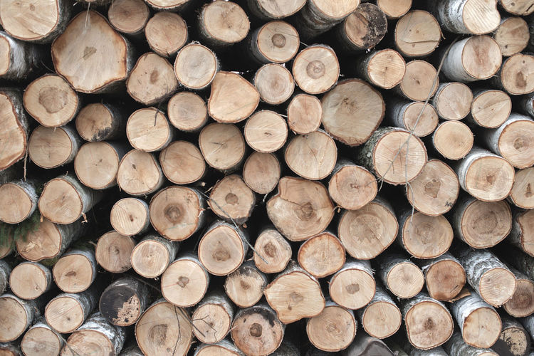Abundance Arrangement Backgrounds Deforestation Environmental Issues Firewood Forestry Industry Fossil Fuel Fuel And Power Generation Full Frame Heap Large Group Of Objects Log Lumber Industry No People Pile Repetition Shape Stack Textured  Timber Tree Ring Wood Wood - Material Woodpile