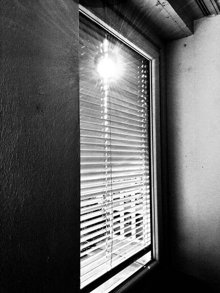 Window Indoors  Ceiling Low Angle View Day Blinds Sunlight Illuminated Gegenlicht Jalousie Window Fensterblick  Schwarzweiß Black & White Black And White EyeEmNewHere