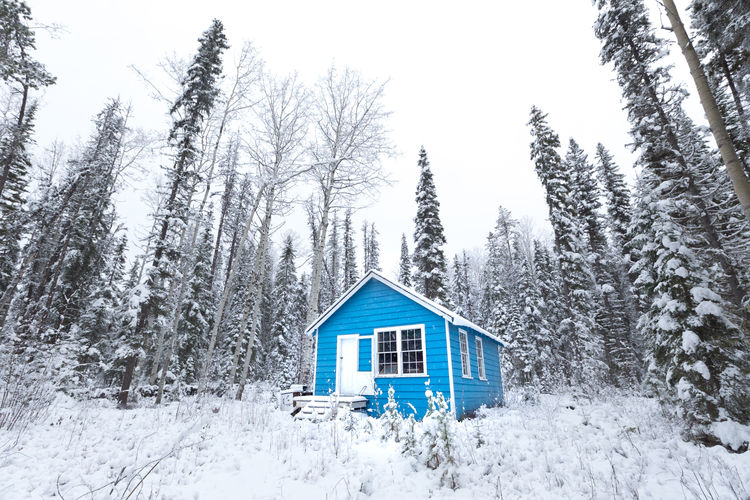 """""""I went to the woods because I wished to live deliberately, to front only the essential facts of life, and see if I could not learn what it had to teach, and not, when I came to die, discover that I had not lived."""" 1854 - Henry David Thoreau. Little blue cabin. Bowron Lake, British Columbia, Canada Bowron Lake Cariboo Mountains Snow ❄ Tiny Tree Trees Architecture Blue House British Columbia Cabin Canada Cold Temperature Forest House Mountain Mountain Hut Mountains No People Outdoors Remote Small Snow White Winter Woods"""