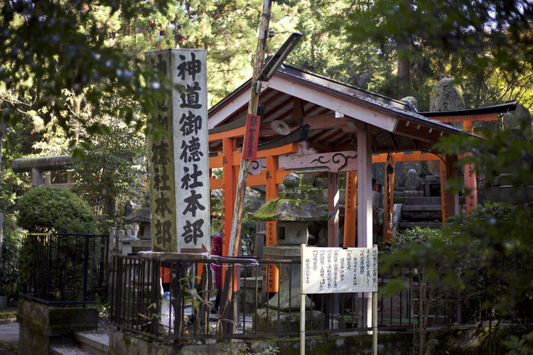 Japan Japanese  Architecture Building Building Exterior Built Structure Communication Day Growth House Nature No People Outdoors Plant Residential District Restaurant Shrine Text Tree Western Script Wood - Material