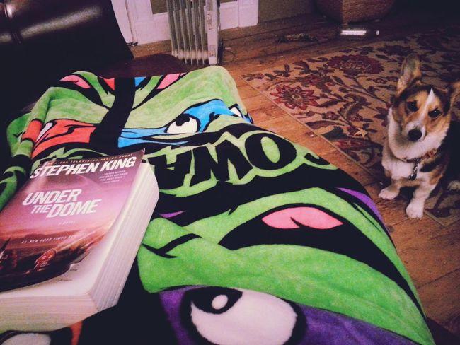 My evening ♥ Relaxing Enjoying Life That's Me Stephen King