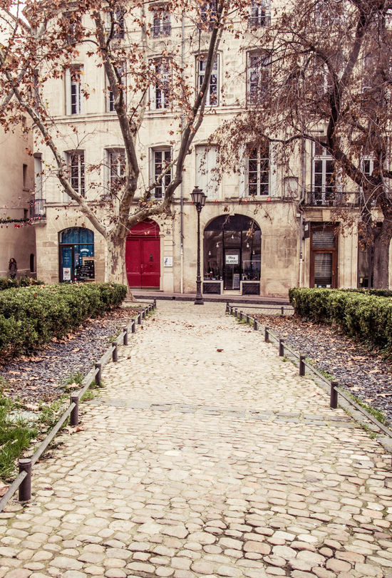 Autumn France🇫🇷 Montpellier Architecture Building Exterior Built Structure City Cobblestone Cobblestones Day Leaves Falling No People Outdoors Quaint Perspective The Way Forward Tree Walkway