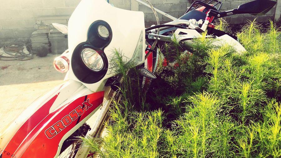 Green Relaxing Hanging Out No Ride No Glory Dirtbike