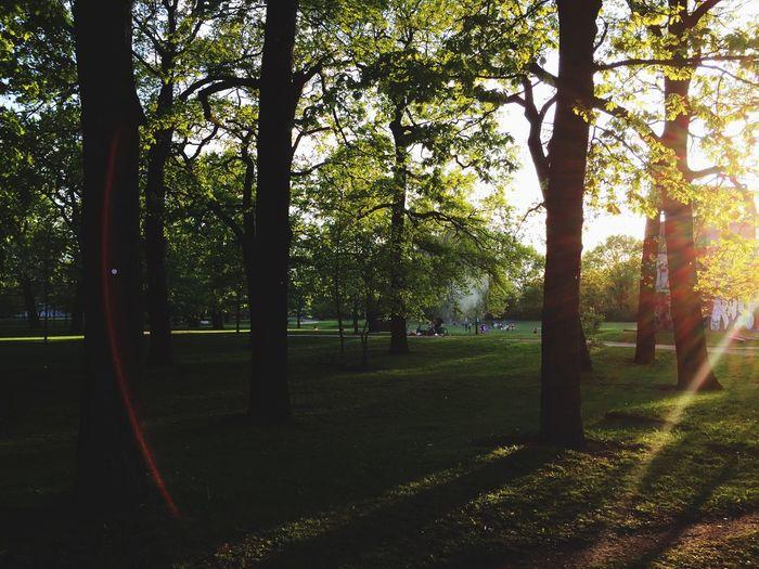 Relaxing Enjoying Life Berlin Enjoying The Sun