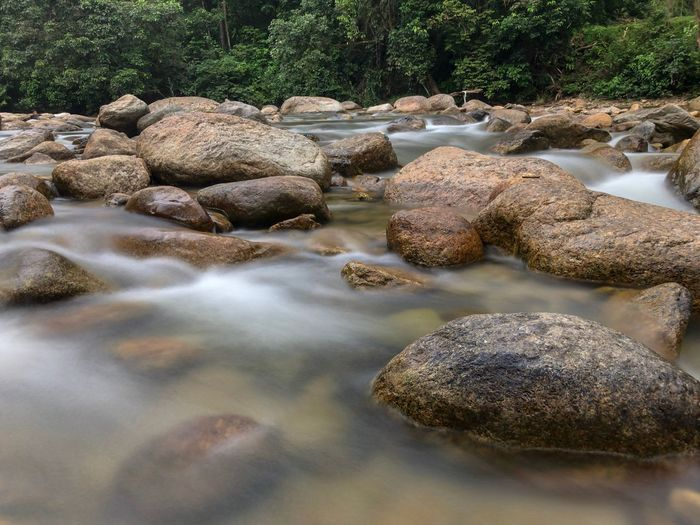 Water flowing between rock at Kuala Woh Perak Malaysia. Natural Mountain Motion Moss Malaysia Landscape Green Freshness Fresh Forest Foliage Fluid Flowing Flow  Fall Environment Creek Cataract Cascade Blur Beauty Beautiful Background Water Rock - Object No People Nature Outdoors Pebble Day