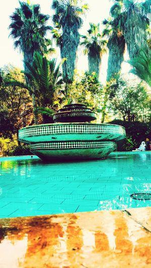نافورة اغادير مغرب Water Morocco 🇲🇦 Beautiful Blue نخل Day Sky Tree Waterdrops