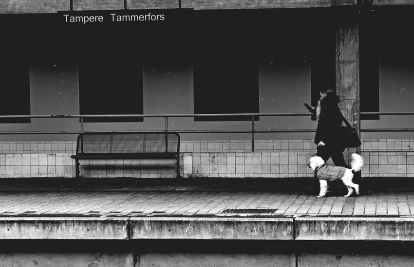 Woman and Dog as it Starts to Snow. Real People People Women Walking Railroad Station Platform Outdoors Tampere Finland Landscape Urban Landscape Streetphotography Black And White