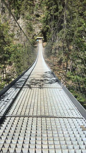 The Bridge The