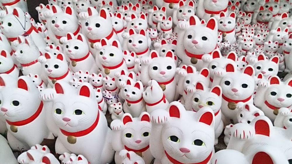 Gotokuji temple Beckoning Cat Cat Gotokuji Japan Lucky Cat Red Tokyo White Wishes