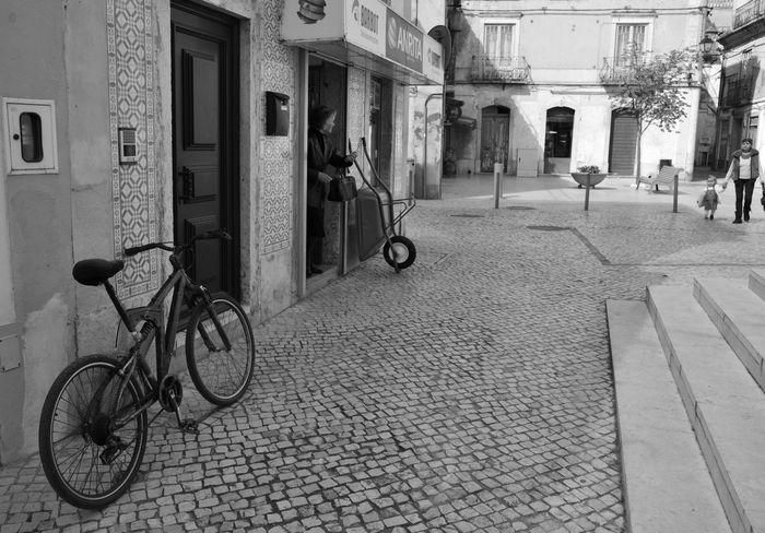 Alcácer do Sal Alcacer Do Sal Alcácer Do Sal-Palafítico Alentejo Bicicleta Bycicle Costa Alentejana Nature Portugal Rio River Riverside Riverside Photography Rua Sado Scenic Street Town Water