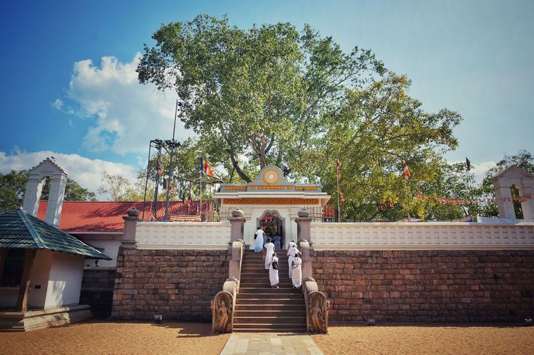 Buddhism Buddhism Tree Sri Lanka EyeEm Best Shots EyeEm Gallery EyeEmNewHere History Blue Sky SriLanka Bodhisattva Human Representation History Tree Sculpture Sky Statue Built Structure Outdoors Architecture Real People Cloud - Sky Nature