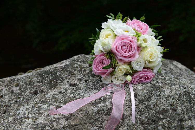 Pink Color Flower Flowering Plant Plant Beauty In Nature Rosé Rose - Flower Close-up Nature Fragility Vulnerability  Freshness Flower Head Petal Inflorescence No People Focus On Foreground Outdoors Solid Rock Bouquet Flower Arrangement