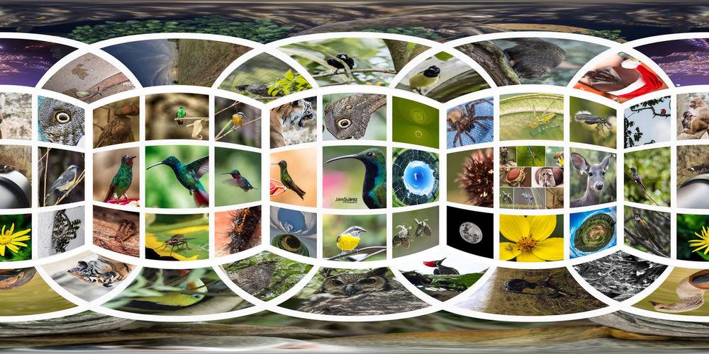 Digital composite image of multi colored glass