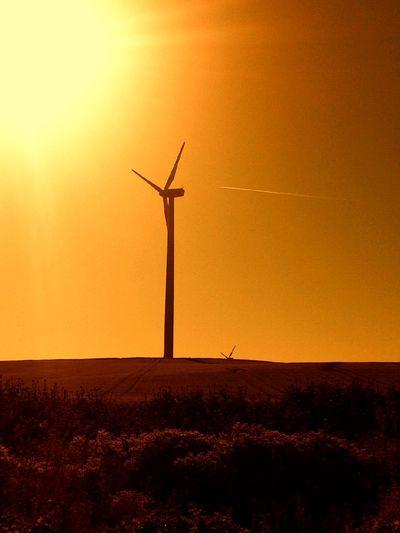 Sunset Driving Landscape AMPt_community